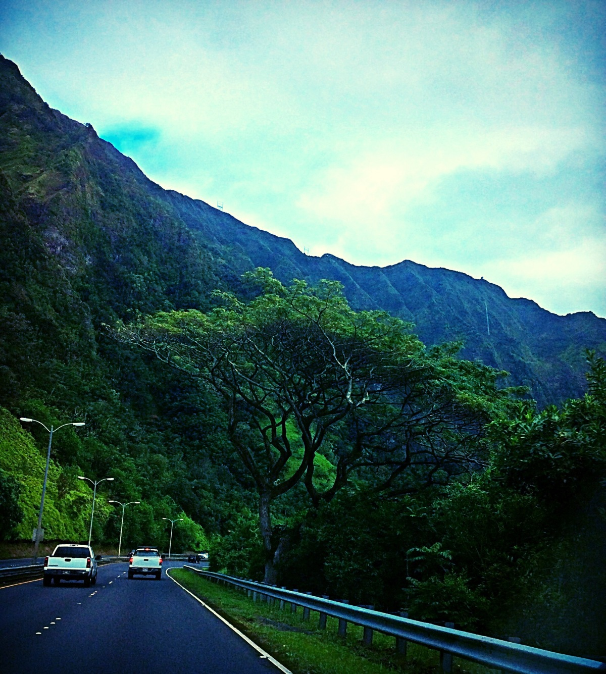 North Shore, Part 1: The Scenic Drive along the Kamehameha Hwy