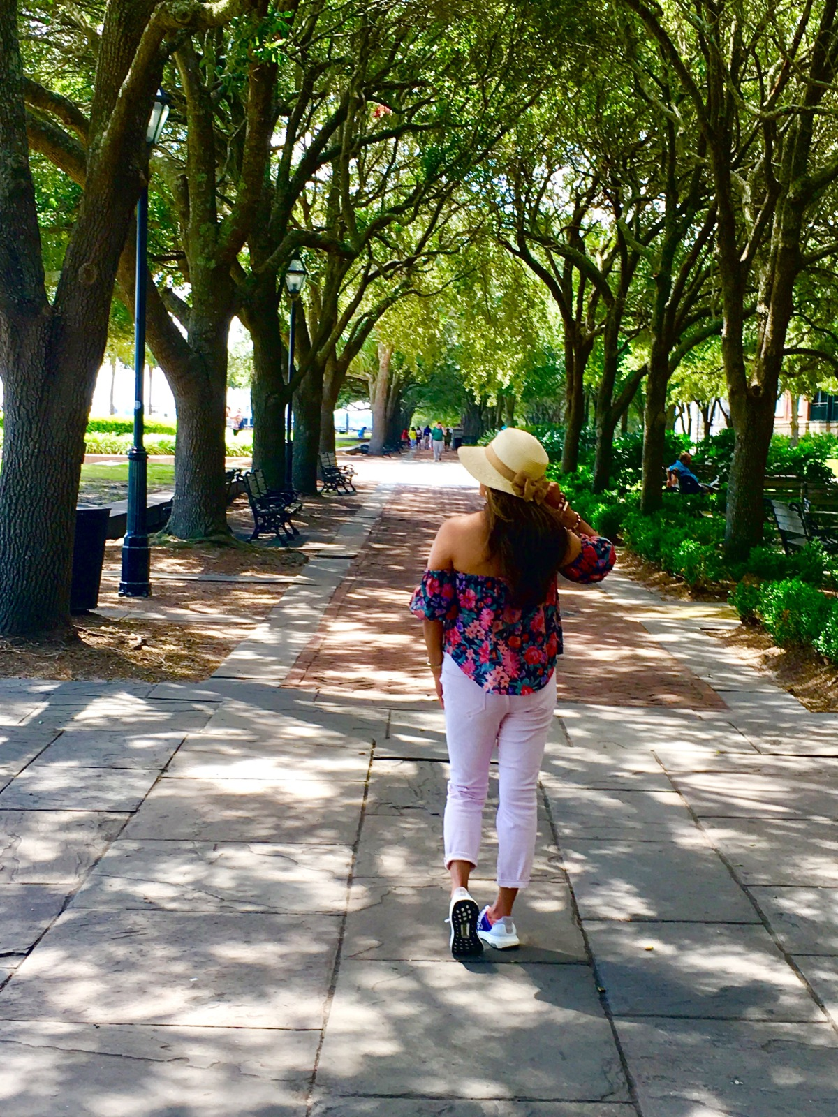 Charleston, South Carolina: A true southernbeauty